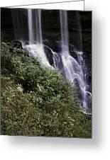 Waterfall Wildflowers Greeting Card