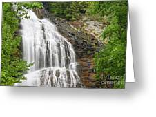 Waterfall With Green Leaves Greeting Card