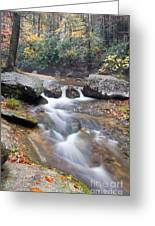 Waterfalls At Roaring River Stone Mountain Greeting Card