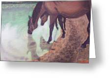 Watering Hole Greeting Card