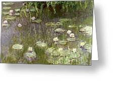 Waterlilies At Midday Greeting Card