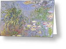 Waterlilies, Cluster Of Grass Greeting Card