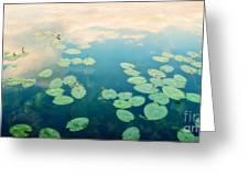 Waterlilies Home Greeting Card by Priska Wettstein