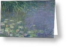Waterlilies Morning Greeting Card