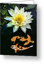Waterlily And Koi Pond Greeting Card