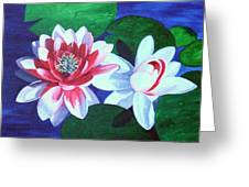 Waterlily Dance Greeting Card