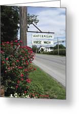 Watermelon Horse Wash Greeting Card