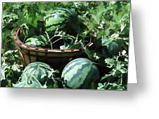 Watermelon In A Vegetable Garden Greeting Card by Lanjee Chee