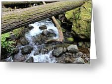 Waters Run Through It Greeting Card