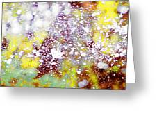 Waters Spray In Summers Delight Greeting Card