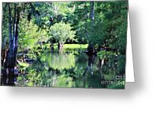 Waterscape #1 Hillsborough River Greeting Card