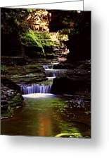 Watkins Glen Gorge In Summer Greeting Card