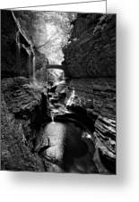 Watkins Glen Greeting Card