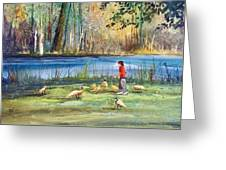 Wautoma Mill Pond Greeting Card