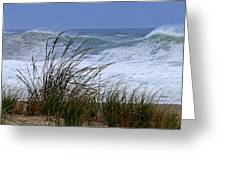 Wave And Sea Grass Greeting Card
