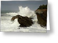 Wave At Shore Acres 2 Greeting Card