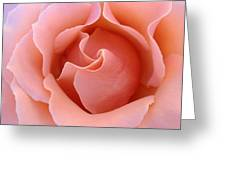 Wave Of Rose Greeting Card