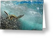 Wave Rider Turtle Greeting Card