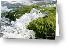 Wave Splash On The Green Rock Greeting Card