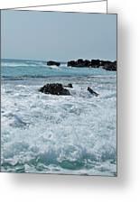 Wave Spray Greeting Card