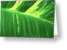 Waves Of Green Greeting Card