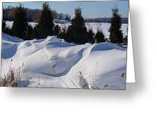Waves Of Snow Greeting Card