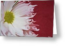 Waves Of White Greeting Card