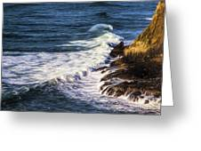 Waves Rocks And Birds Greeting Card
