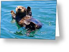 Waving Otter Greeting Card