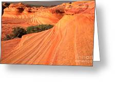 Wavy Sunset Curves Greeting Card