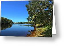 Way Down Upon The Swuanee River In Hdr Greeting Card