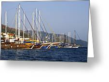 We Are Sailing Greeting Card