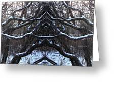 We Protect The Trees Greeting Card