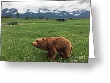 We Saw A Bear Greeting Card