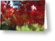 Wearing Red For Fall Greeting Card