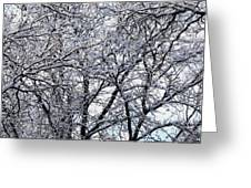 Weather Patterns Greeting Card