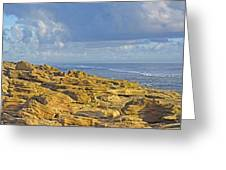 Weathered Coquina Ocean Rocks Greeting Card