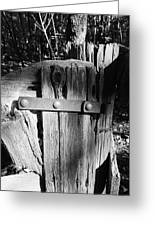 Weathered Fence In Black And White Greeting Card