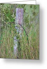 Weathered Fence Post Greeting Card