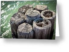 Weathered Wood Pier Posts In Lake Michigan Greeting Card
