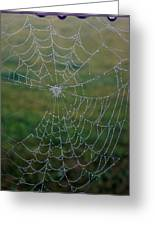 Web After The Storm Greeting Card