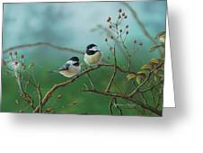 Web Chickadees Greeting Card