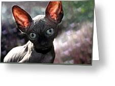 Wee Little Kitten Greeting Card