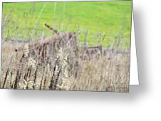 Weeds 008 Greeting Card