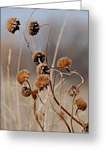 Weeds Are Pretty Too Greeting Card