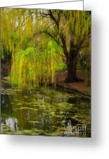Weeping Pond Greeting Card by Fred Lassmann