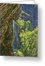 Weeping Rock - Zion Canyon Greeting Card