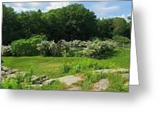 Weir Farm National Historic Site 03 Greeting Card