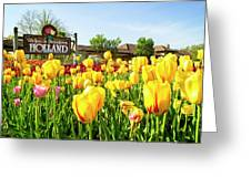 Welkom To Holland Greeting Card