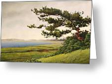 Wellfleet Saltmarsh Greeting Card